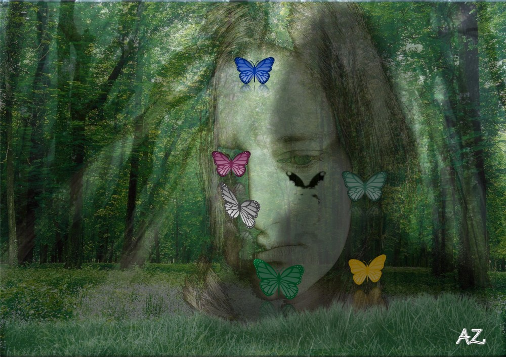 Butterflies AZ