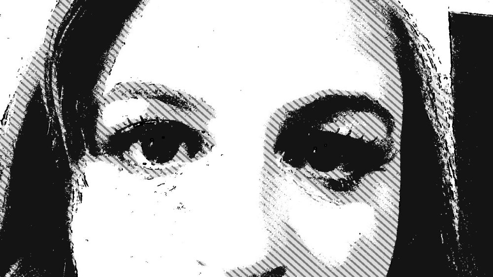 the top half of a woman's face, in grey, black and white reminissant of newspaper or zebra stripes. She stares directly at the watcher.