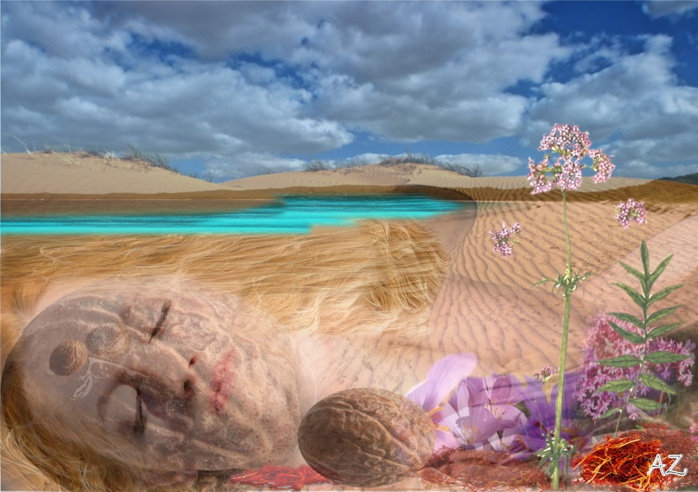A woman's sleeping form blurs into an image of sand dunes, sea and sky. Saffron , nutmeg and valerian stud her form.
